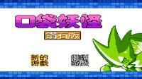 FC口袋妖怪钻石版游玩解说1