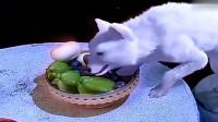 狐妖偷吃了蛇妖的一颗仙果,瞬间幻化成了人,这也太美了吧