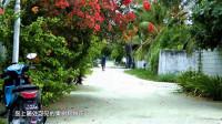 【原创】马尔代夫省会级大城市图鲁斯杜岛 赶超中国行政村规模  看街街巷巷长啥样