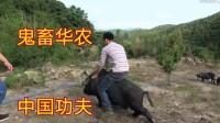 [华农兄弟]鬼畜——中国功夫    踩点剪辑