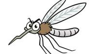 如果蚊子正在吸血的时候,不能把它打死,看专家的正确做法!