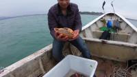 烽雄组合出海放延绳钓,抓到一条值钱鱼,小小一只竟然要几百块