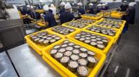 实拍金枪鱼罐头生产过程,设备自动化没有一技之长流水线都不要!