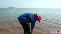 大梅赶海在海边捡贝壳,偶遇这个蓝宝石,想让懂行的朋友鉴定一下!