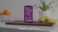 iPhone 11R曝光,重大升级比XR更有性价比!