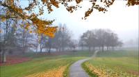 晨雾冬季清晨步道