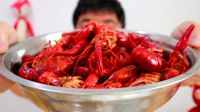 """试吃销量超高的""""麻辣小龙虾"""",50元买了3.6斤,吃的太爽了"""
