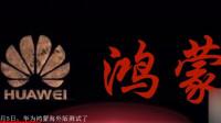 华为鸿蒙海外版测试了,中国人有了自己的手机操作系统!