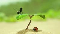 昆虫总动员2:来自远方的后援军