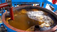 工厂实拍,带你看看棕榈油的制造过程,长见识了