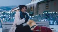 【酷影料】《扫毒2》票房破10亿刘德华古天乐终圆梦,《小Q》首发预告看狗狗如何表白任达华190718