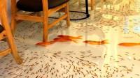 """养鱼的最高境界,将自家客厅打造成""""鱼缸"""",每天都有人排队参观!"""