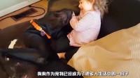 小宝宝骑着狗狗找妈妈!