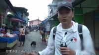 男子早上六点起床去泰国菜市场,在这里真是什么都敢卖,令人咂舌