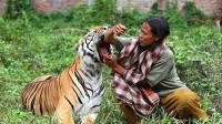 女子曾救下一只老虎,放生多年之后再次相遇,画面让人意外