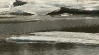 阿拉斯加冰川以前所未有速度融化 晚间新闻 20190720 高清版
