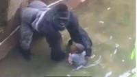 灵异事件:小孩不小心掉进水池发生了诡异一幕