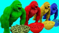 超奇怪!动物园的大猩猩捡到了什么水果?吃了竟然变了一种颜色?儿童玩具游戏故事