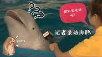 记者采访海豚:你回家吃饭吗?海豚:你指定有点儿毛病……