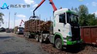 自带吊臂的塔特拉、沃尔沃和斯堪尼亚卡车,一起来运输木材