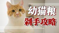 超干货!幼猫粮推荐合集!给小猫选口粮,预算决定一切!
