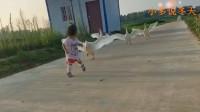 农村三恶霸之一,小朋友看见绕道而行!