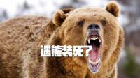 山路骑车突遇狗熊怎么办?巨熊狂追不舍,骑手疯狂逃命!