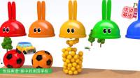 兔子杯帽子下面的彩色足球是怎么来的呢 家中的美国学校