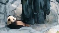 熊猫:兄弟!下次放水前,能打声招呼不?看给劳资吓的!