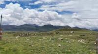 318国道理塘到巴塘,唾佛观景区,四千米海拔炖排骨