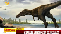 亚洲首例!霸王龙足迹在江西被发现!脚掌和成年人身体差不多大
