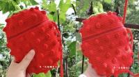 179集 【白兔糖手工馆】草莓包大S水果造型包钩针编织视频教程
