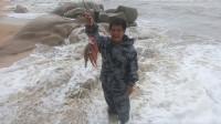 老四台风天去海边捡被大浪冲上的鱼,全用树枝串起来,太有才了