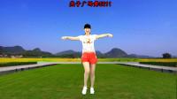 32步夏季热歌广场舞《野花香》DJ版,句句大实话,附分解动作