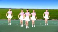 气质美女广场舞《野花香》大气豪迈,动感时尚!
