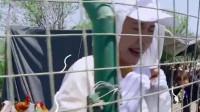 年轻女演员被鸡吓到尖叫,理由竟是鸡长得丑!这捡鸡蛋的操作神了