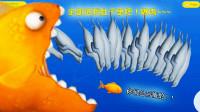 美味汪洋:金鱼想找人类复仇,谁料半路杀出海豹家族,是时候清场了!