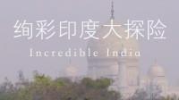 绚彩印度大探险 第三集