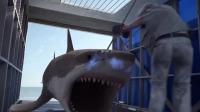 女子大战鲨鱼,竟用电叉插中鲨鱼的头,这下可把鲨鱼电惨了