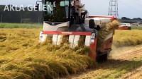 大型农场之神奇的农业技术。-令人印象深刻的拖拉机视频下