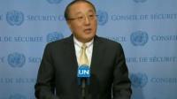 联合国安理会闭门磋商克什米尔问题