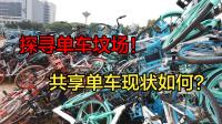 共享单车坟场实体探访:触目惊心
