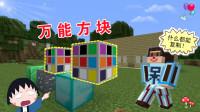 我的世界:逆天神器【万能方块】,啥物品都能复制!【游戏真好玩】