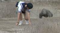日本女子,作死勾引科莫多巨蜥追自己,镜头拍下惊险过程