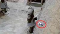 为什么去看兵马俑,一定得小心手机?专家:掉下去可就不是你的了