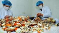"""外国人发明""""自动剥蟹机"""",40秒一只,中国吃货:毫无感情的吃法"""