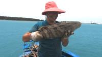 开海了玉平出海干一单大的,抓到条巨型石斑鱼,阔气老板娘全收了