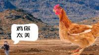 荒野求鲲系列之:坤哥大战铁公鸡