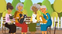 脑力测试:哪一个老奶奶是女巫?