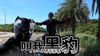 谷阿莫Life 21:像黑豹这样趴在行驶中的车顶真的不会被甩出去吗?